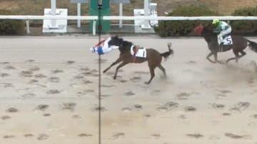 El jockey japonés Shoichi Kawahara sale despedido a pocos metros de la línea de meta