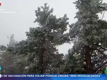 Impactantes imágenes: el frío deja una gran cencellada en Soria