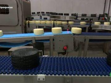 Paso a paso de la fabricación masiva: así se crean los quesos industriales