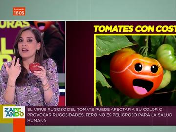 Así es el virus rugoso del tomate que hizo temblar a todo el sector: Boticaria García te da las claves