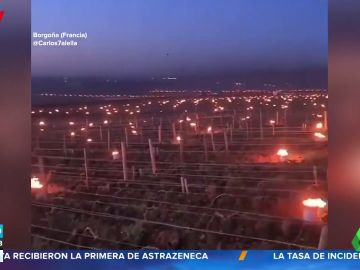 Este es el motivo por el que los agricultores franceses están quemando sus viñedos