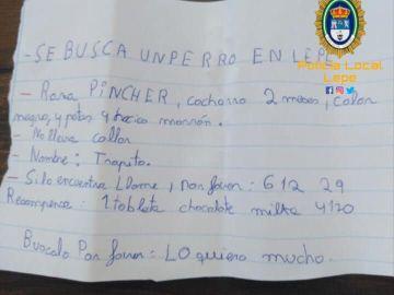 Atención, se busca: la tierna nota de un niño de Lepe que ofrece chocolate para recuperar a 'Trapito'