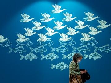 Una mujer pasa delante de una obra gráfica de aves volando